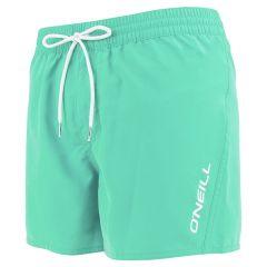 sun & sea zwemshort groen